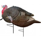Primos Gobbstopper Jake/Hen Combo Turkey Decoy